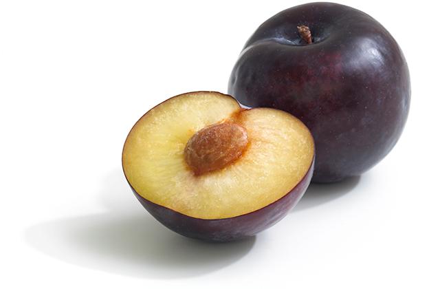 Hortgro Plum Purple Majesty